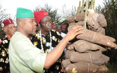 The origin of gender sensitivity and yam in Igbo land